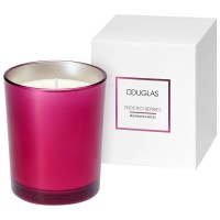 Douglas Seasonal Frosted Berries Red Fruits & Spices Candle