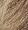 7.1-Hamvasszőke