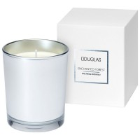 Douglas Seasonal Enchated Forest Pine Tree & Patchouli Candle
