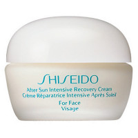Shiseido Sun Care After Sun Intensive Recovery Cream